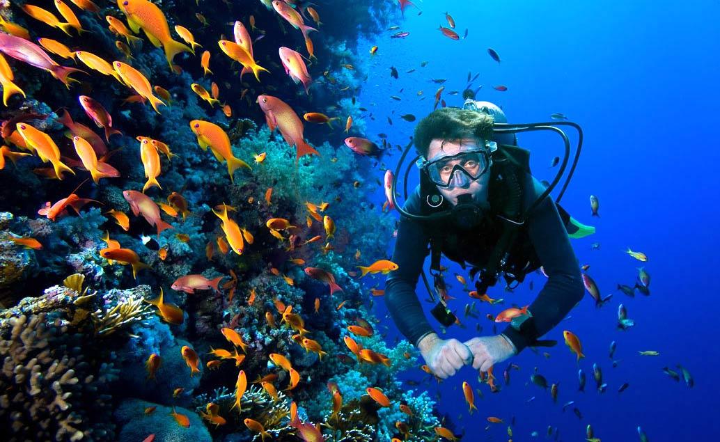 Potápění Mauricius